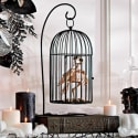 Skeleton Crow In Cage for $17 + free shipping
