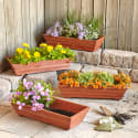 Natural Cedar Planter 4-Piece Set for $40 + free shipping