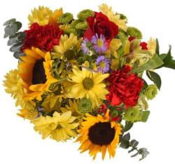InBloom Fresh-Cut Flowers from $40