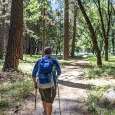 5 Hiking Backpacks for Your Outdoor Adventures