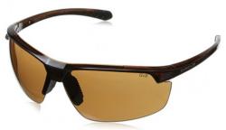 Gargoyle Men's and Unisex Sunglasses for $49