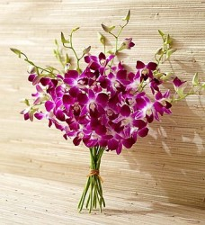 10 Stems of Exotic Breeze Orchids for $38